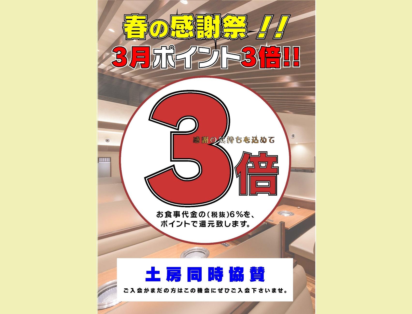 彩炉◆2021年3月ポイント3倍
